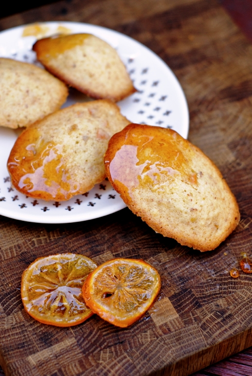 olive oil + candied meyer lemon madeleines